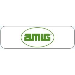 AMIG - SPAIN